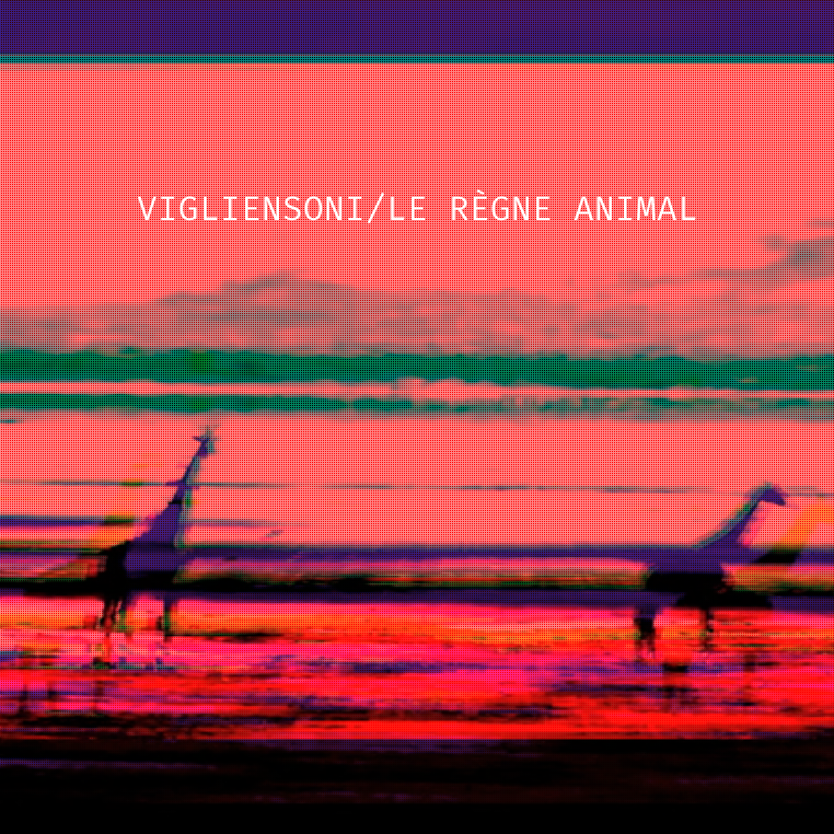 Vigliensoni - Le R+¿gne Animal - cover