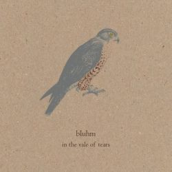bluhm - in the vale of tears