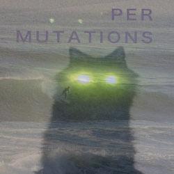 permutations 250 x 250