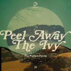 The Pattern Forms - 2016 - Peel Away the Ivy