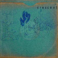 crescent_resinpockets