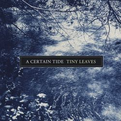 Tiny Leaves - A Certain Tide (Futuresequence, 2015)
