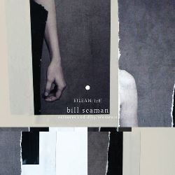 Bill Seaman_ Erasures and Displacements