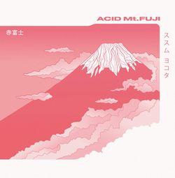 Susumu Yokota - Acid Mt. Fuji