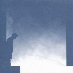 david allred - the transition
